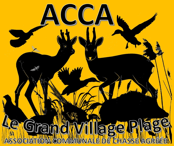 Logo ACCA Le Grand Village Plage