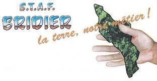 Image Logo STAF BRIDIER