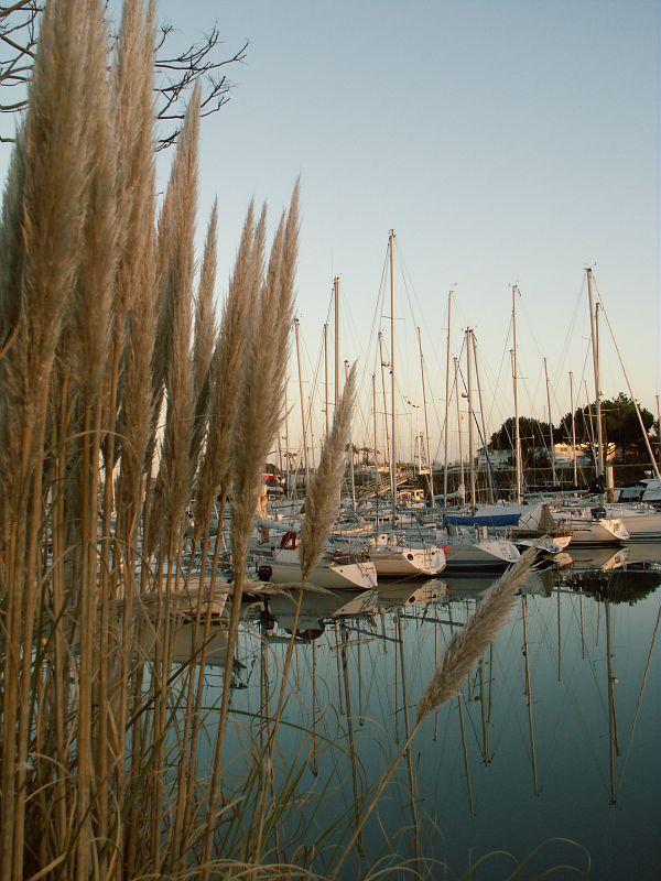 Saint georges d oleron boyardville port de plaisance cmt17 m scattolin